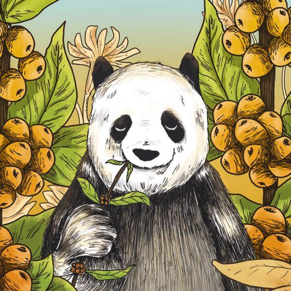 Panda_Illustration_Final_merged_050417_bearbeitet